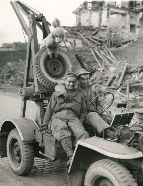 "1945- U.S. troops sit in the ""jeep wrecker"" they created and with which they tow in jeeps that...jpg"