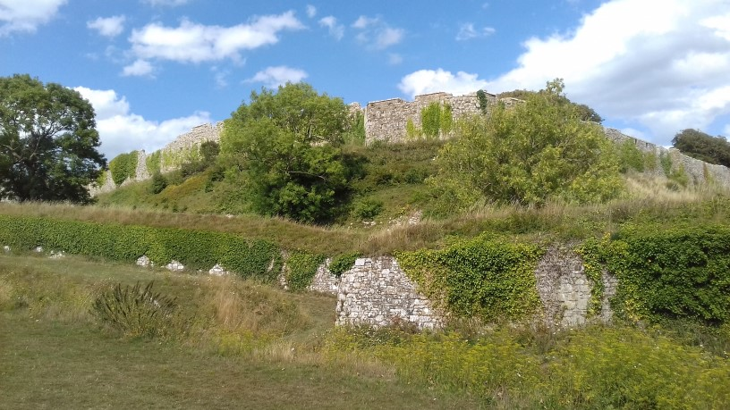 2020 Carisbrooke Castle 2 resized.jpg