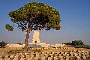 300px-Lone_Pine_Cemetery_2013.07.26.jpg