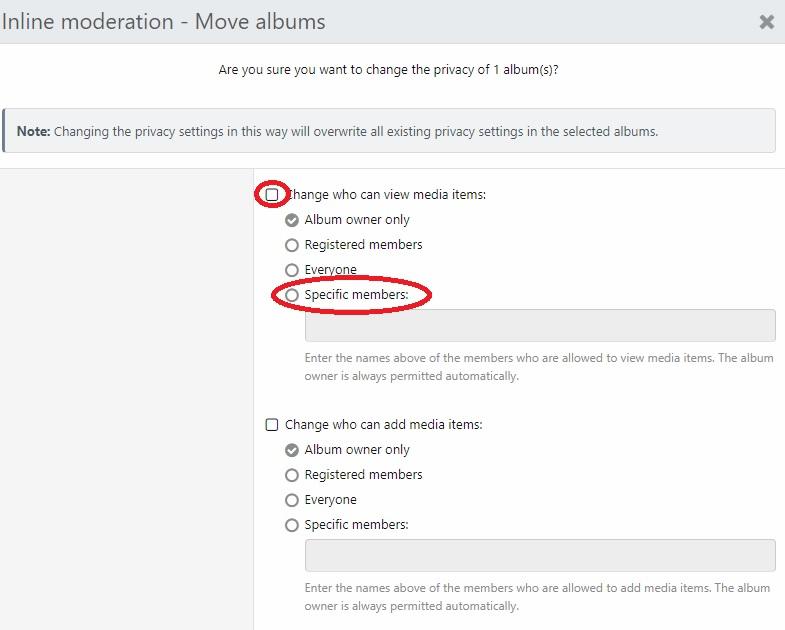 Album Privacy.jpg