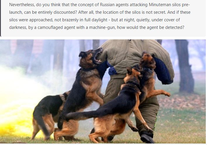 Attack Dogs being trained -2.JPG