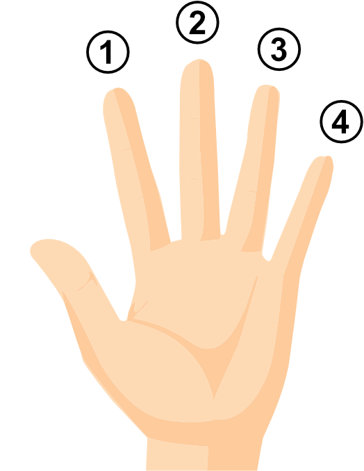 BGQS-finger-numbers.png