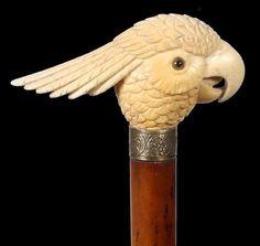 Bird on a cane.jpg