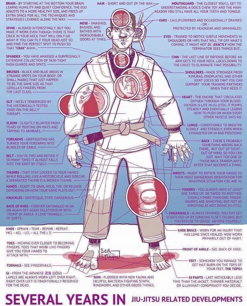 BJJ injuries.jpg