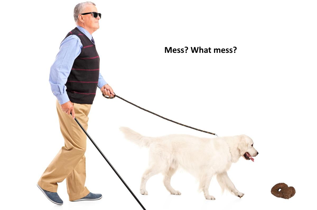 blind-man-with-dog.jpg