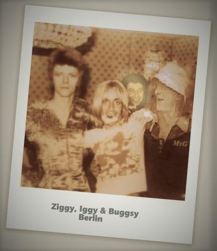 Buggsy Bowie. Iggy (2).jpg