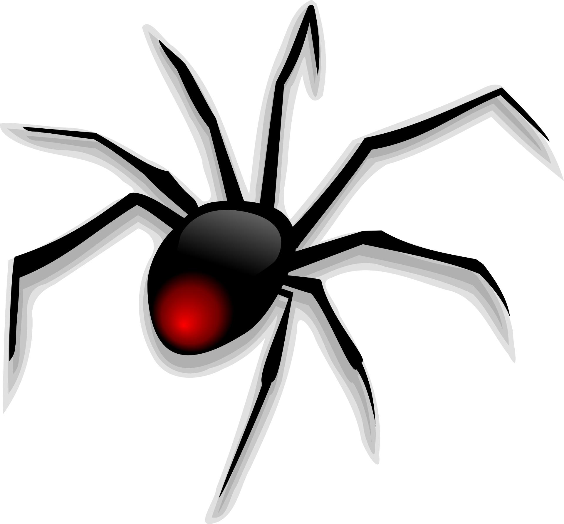 cartoon-animal-black-spider-vector.jpg