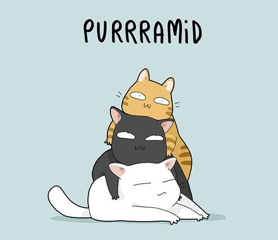 cat-pun-cartoon-purrramid.jpeg