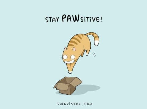 cat-pun-cartoon-stay-pawsitive-cing-vistov-com.jpeg