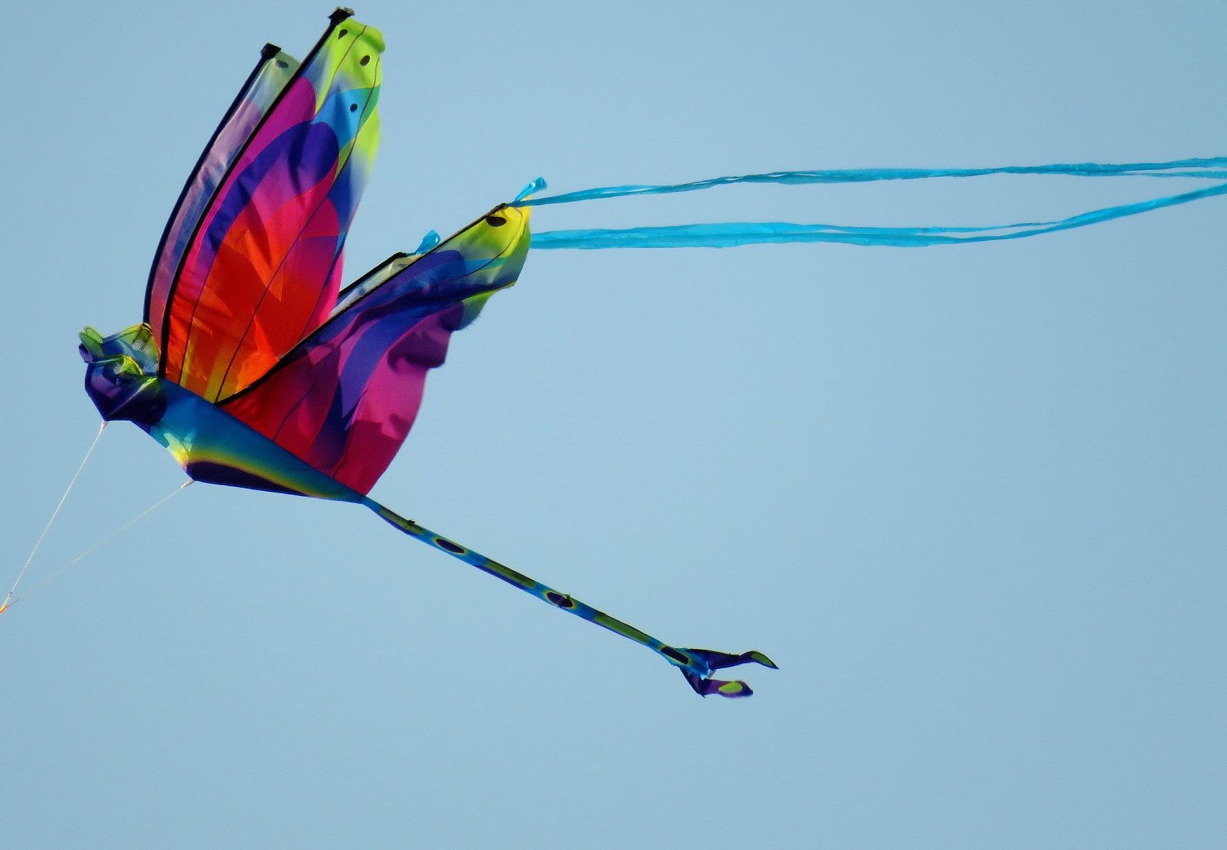 Crosby Kite.jpg