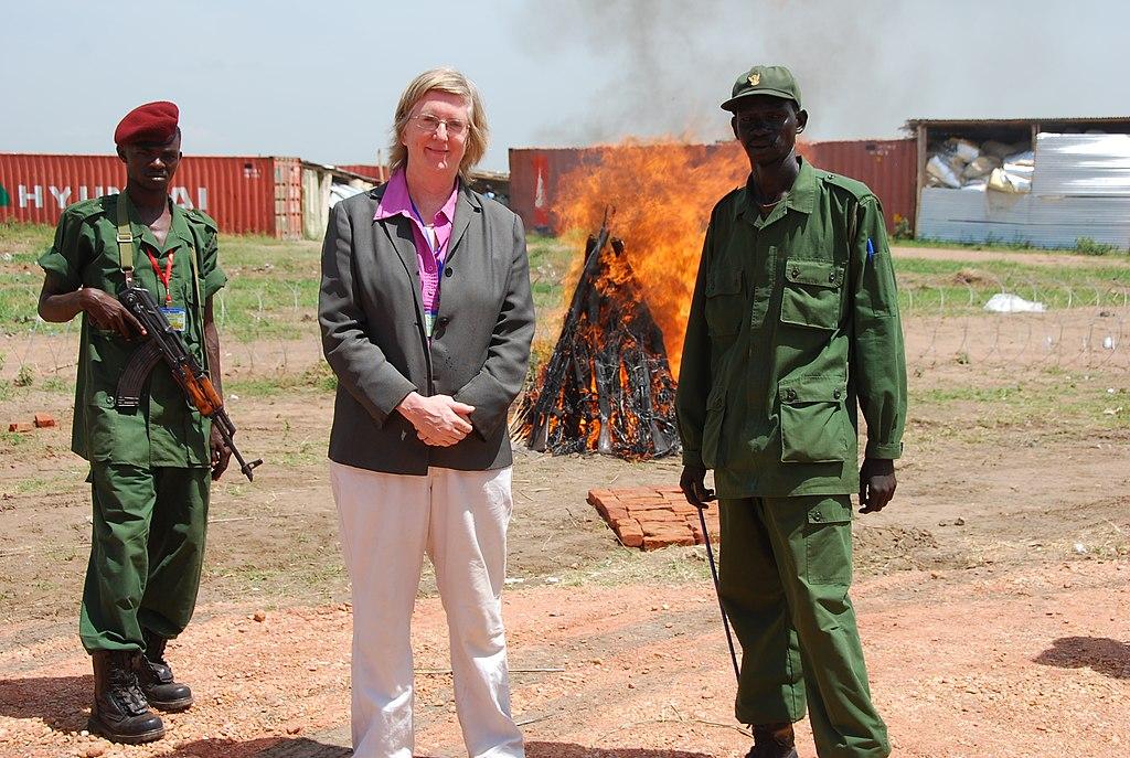Dame Rosalind Mary Marsden DCMG Demobilisation,_Disarmament_and_Reintegration_programme_in_Sud...jpg