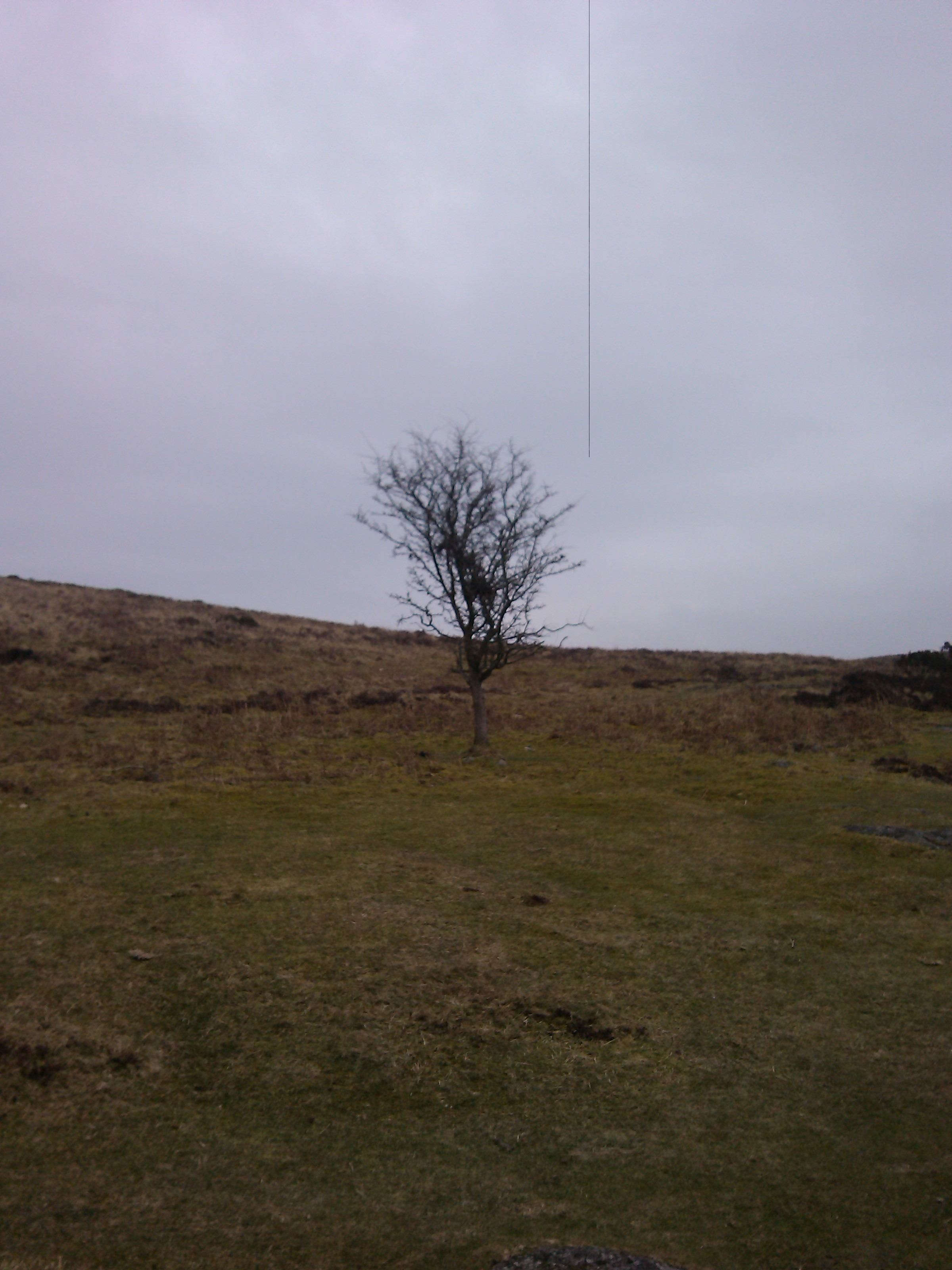 Dartmoor March 2013_22.jpg
