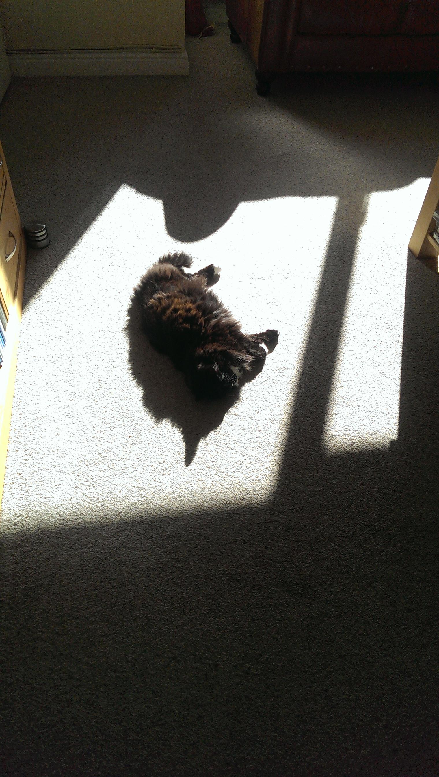 Dusty sun.jpg