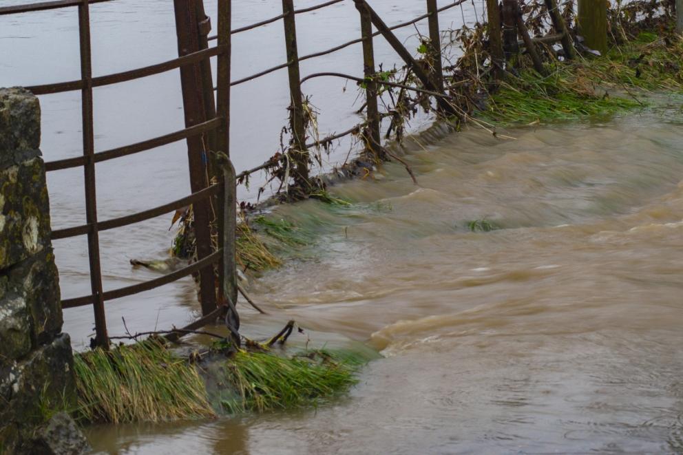 Ewenny & Dipping bridge (14) (Custom).jpg