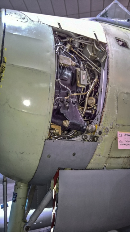 Fairey Gannet AEW (19) (Custom).jpg