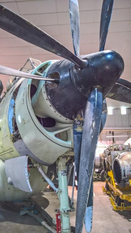Fairey Gannet AEW (23) (Custom).jpg