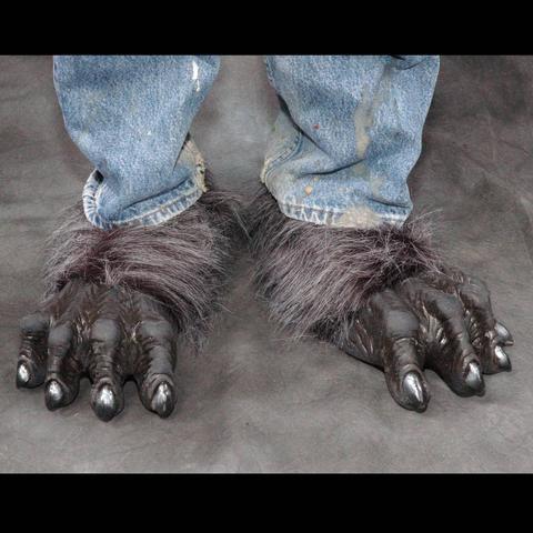 feet11.jpg