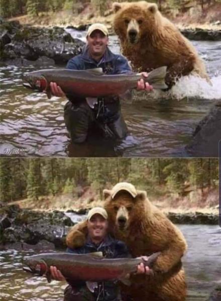 fishing bear.jpg