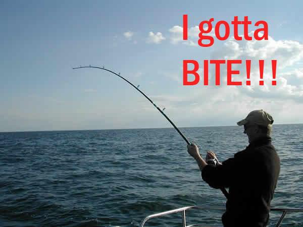 fishing-bite.jpg.c6eaec9dfd9723d0d1eb50d550fd54e4.jpg