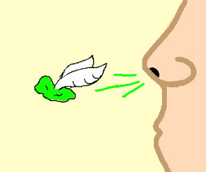 Flying snot.png
