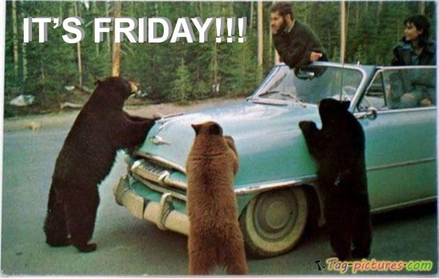 Frioday Bears.jpg