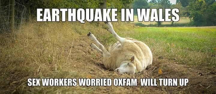 funny wales earthquake.jpg