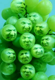 grapes-print.jpg