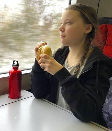 greta train 2.JPG
