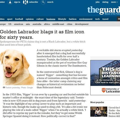 guardian_zpsdiwkgpik.jpg