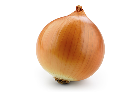 Header_onion.png