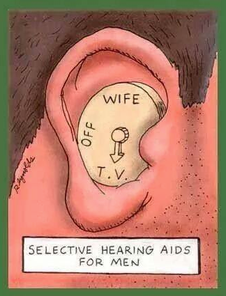 hearing aid.png
