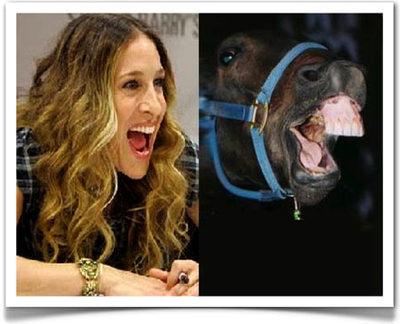 horse_face_sarah_jessica_pa.jpg