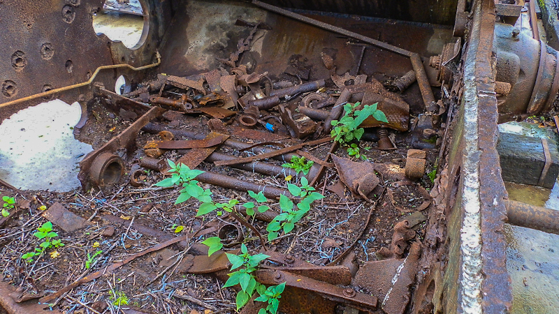 Jagdpanther, Sd.Kfz. 173 - Rusty Wreck (16).jpg