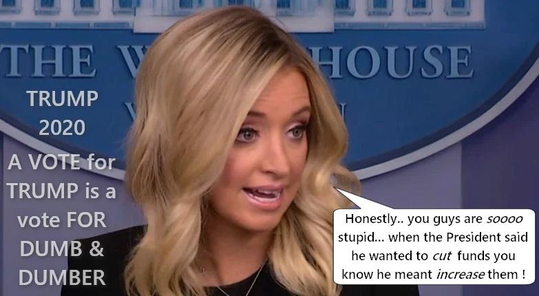 Kayleigh-McEnany-press-briefing3.jpg