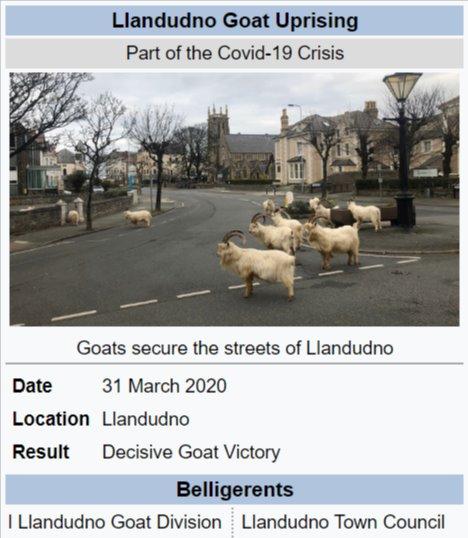 Llandudno Goat Rising.jpg