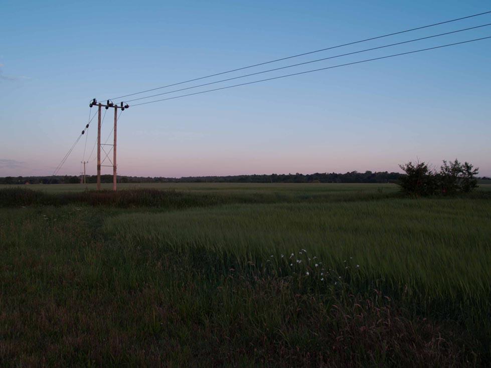 Local fields.jpg
