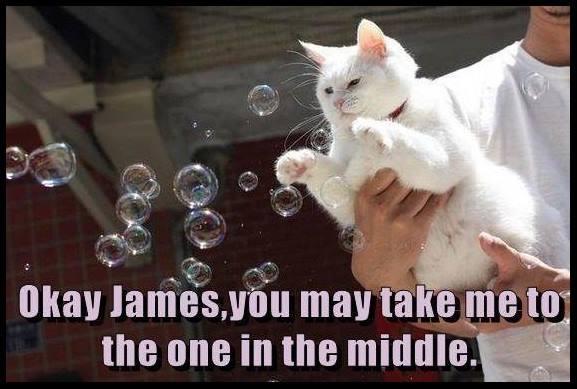 middle bubble.jpg