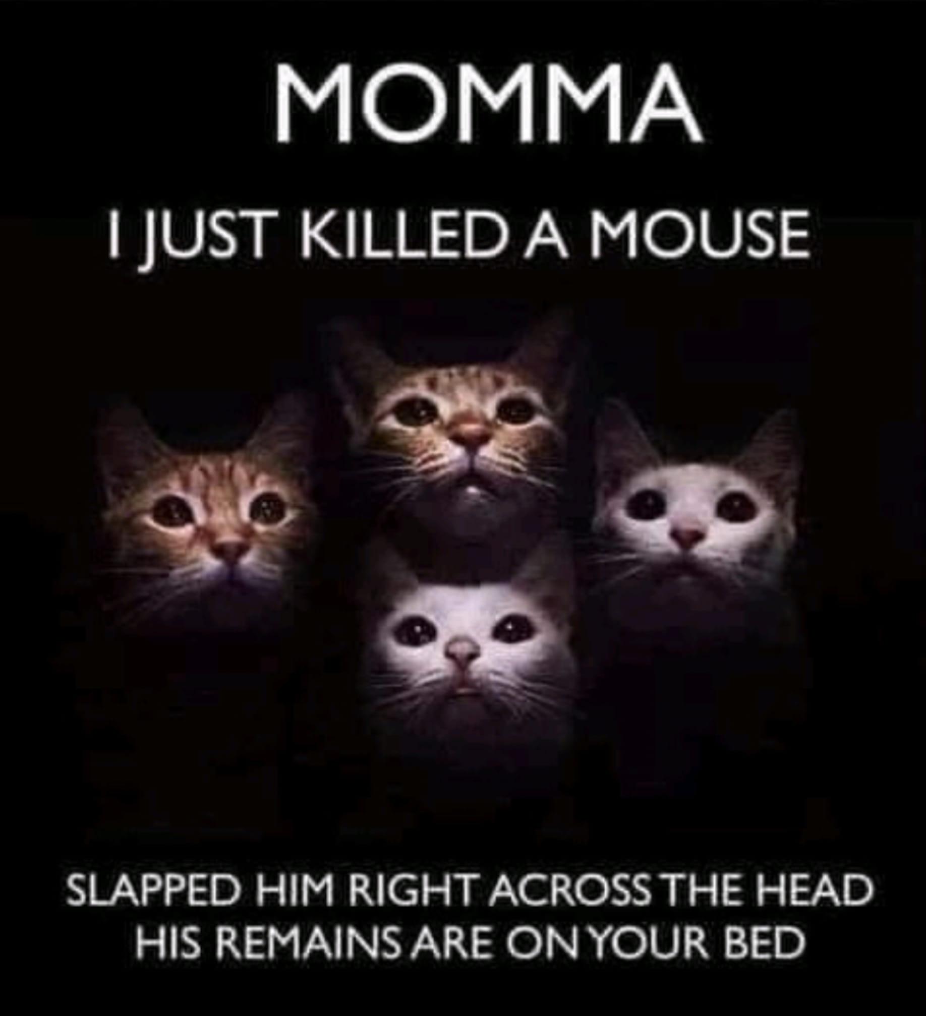 momma killed.jpg