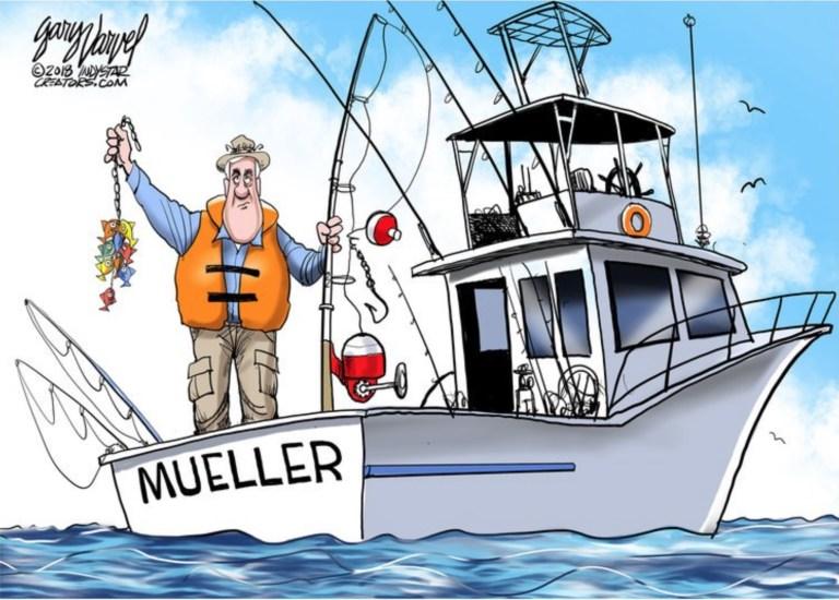 Muellers-Little-fish.jpeg