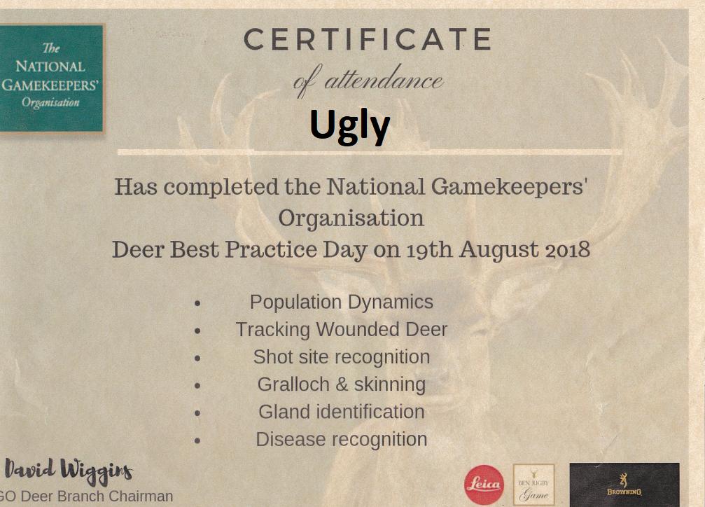 NGO Deer.png