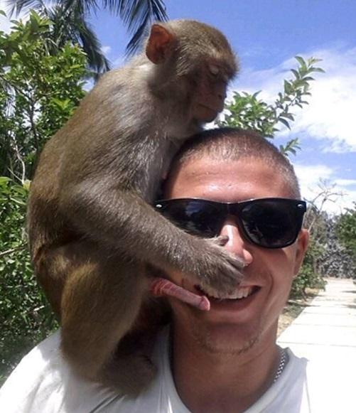 norty monkey.jpg