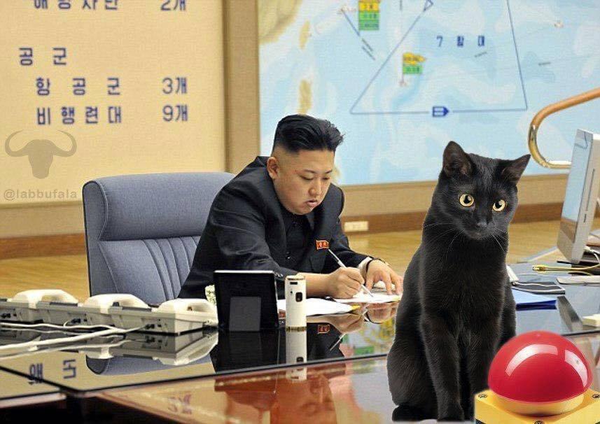 Nuclear cat.jpg
