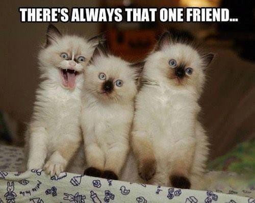one friend.jpg
