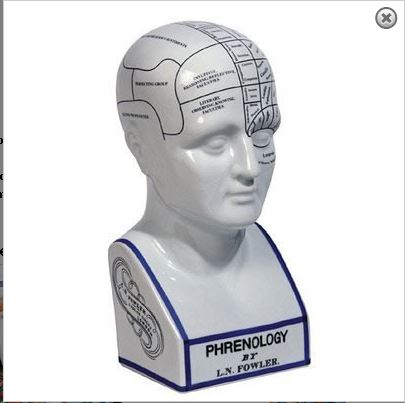 Phrenology Head.JPG
