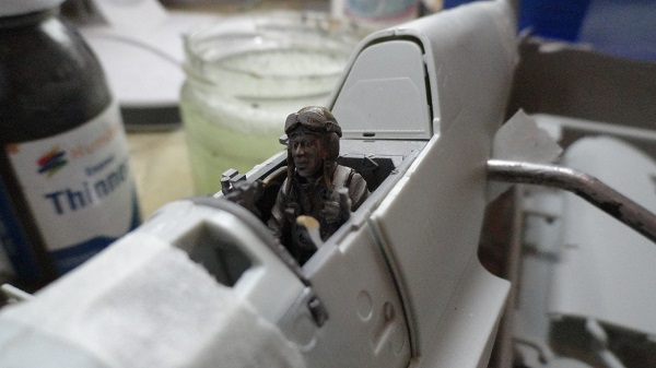 pilot painted and in the cockpit.jpg