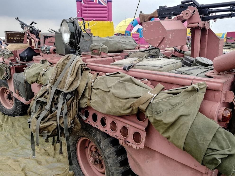 Pink Panther  (5)_edited (Custom).jpg