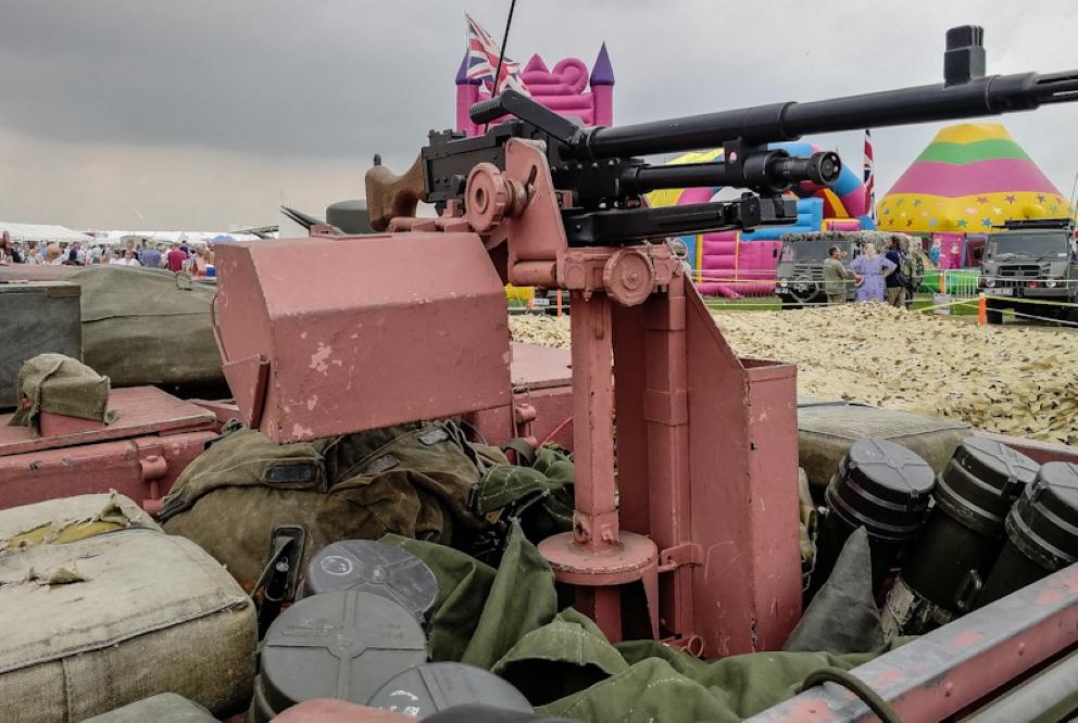 Pink Panther  (6)_edited (Custom).jpg