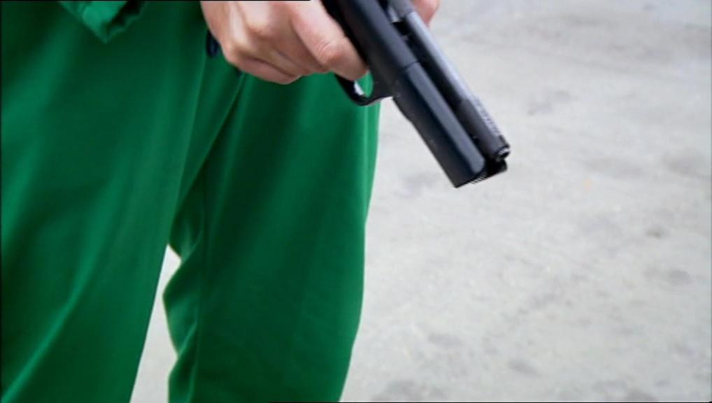 Pistol (2).jpg