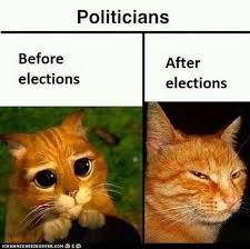 politicians.png