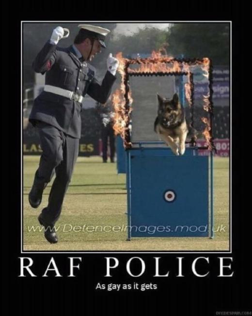 RAF Polioce As Gay as a Gay Thing.jpg